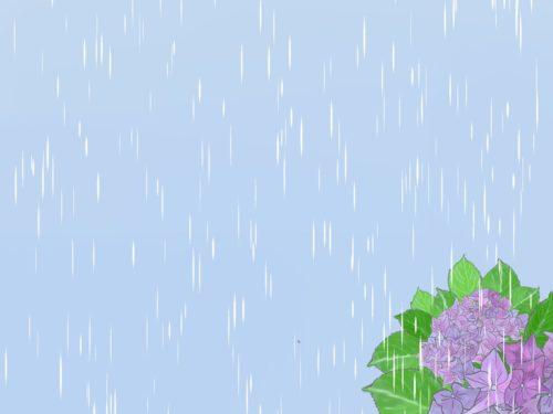 雨と紫陽花