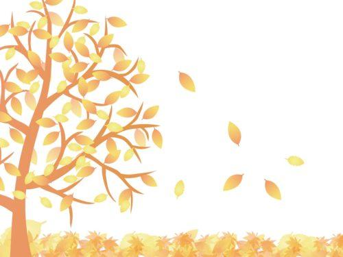 枯れ葉散る