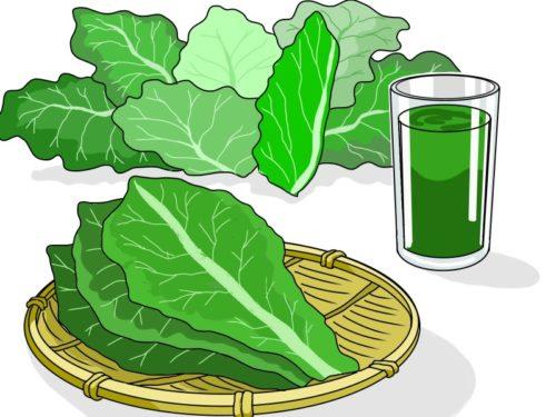 野菜の青汁